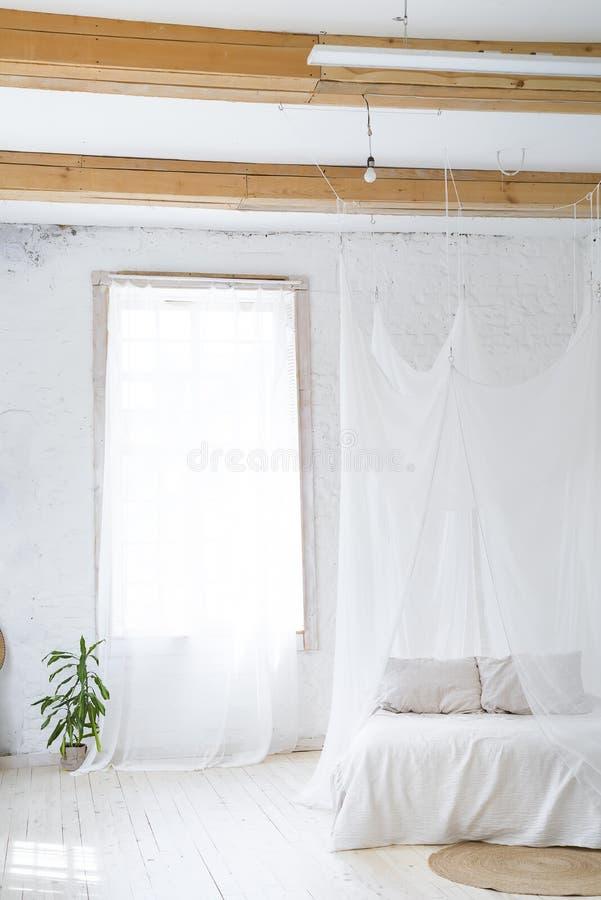 Mooi leeg binnenland met een palm en een gordijn Idee van witte minimalistische ruimte met bank Skandinavisch binnenland stock foto