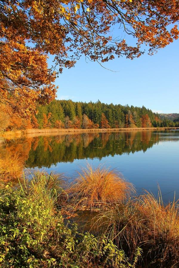 Mooi leg meer in autum, Beiers landschap vast stock foto
