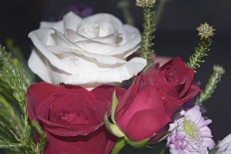 Mooi levend boeket van gemengde bloemen stock afbeeldingen