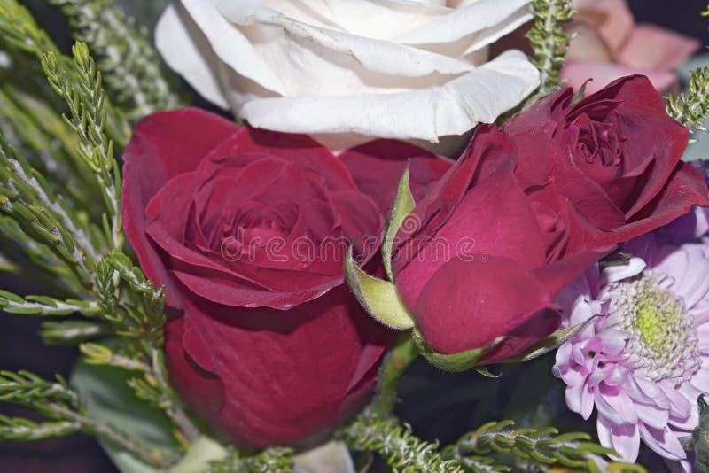 Mooi levend boeket van gemengde bloemen stock foto's