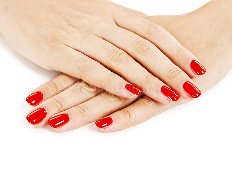 Mooi manicured de handen van de vrouw met rood nagellak royalty-vrije stock foto's