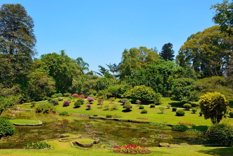 Mooi meer in de Koninklijke Botanische tuin van Peradeniya in Kandy, SR royalty-vrije stock foto's