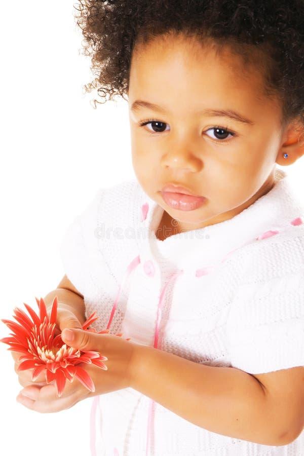 Mooi meisje dat een bloem houdt royalty-vrije stock fotografie