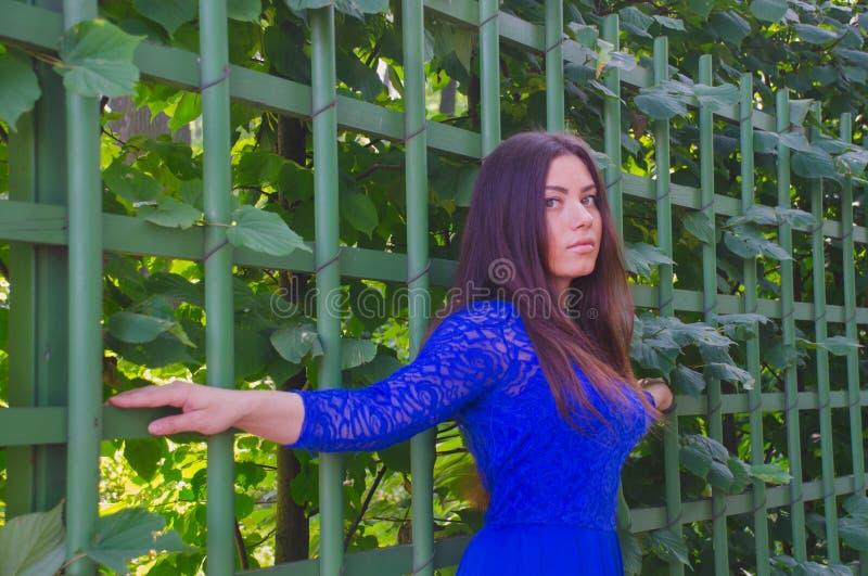 Mooi meisje in de zomerkleding die zich bij een groene omheining bevinden stock afbeelding