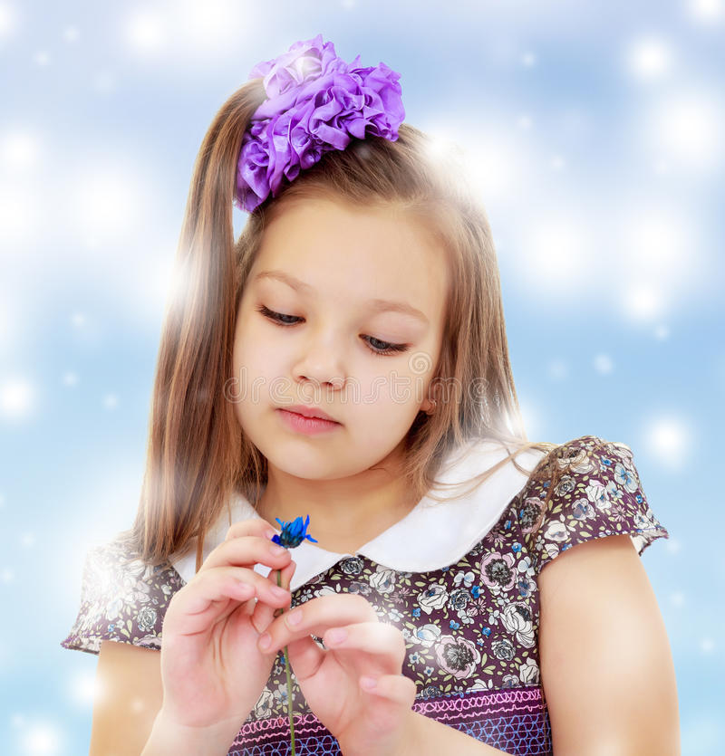 Mooi meisje die blauwe bloem bekijken royalty-vrije stock foto