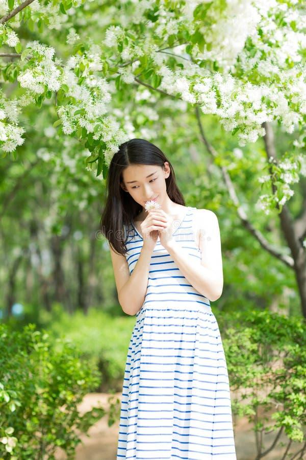 Mooi meisje die een bloem houden stock foto's