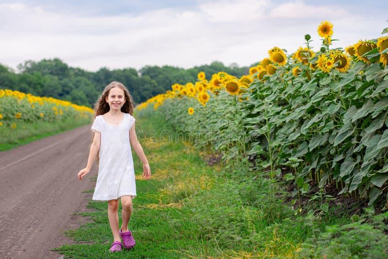 Mooi meisje die op de weg langs de gebiedszonnebloem lopen stock afbeelding