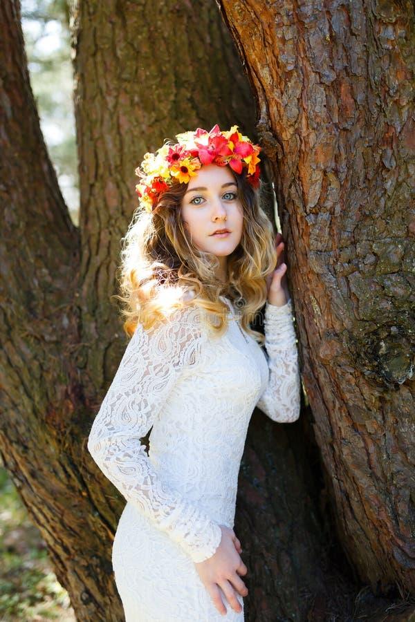 Mooi meisje in een bos stock afbeeldingen