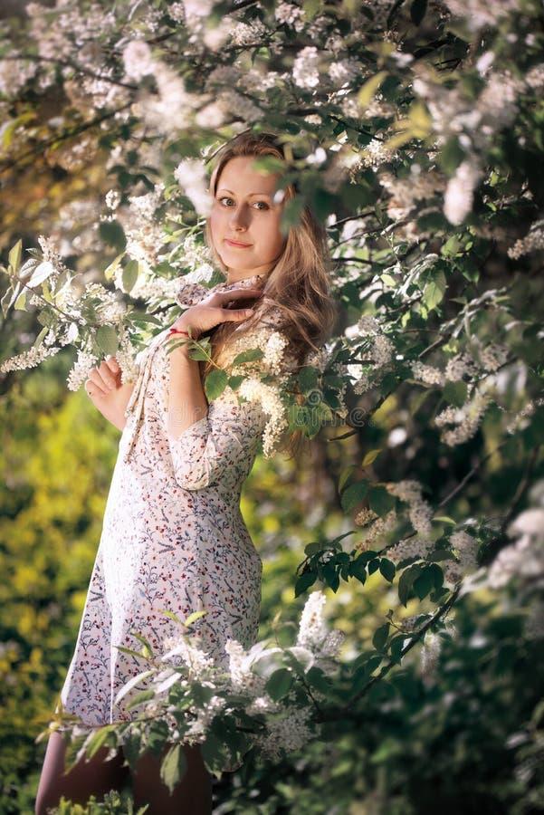 Mooi meisje in een de lente bloeiende tuin stock foto