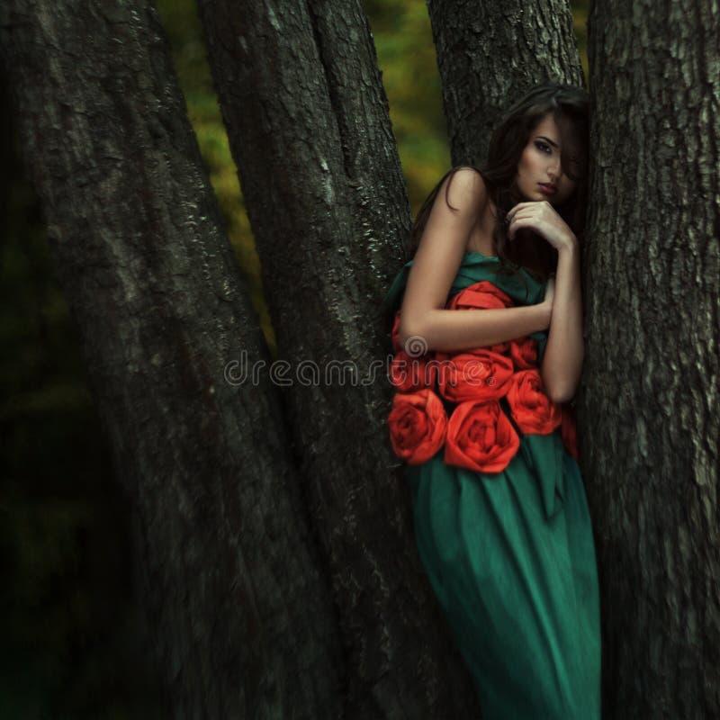 Download Mooi Meisje In Een Geheimzinnige Plaats Stock Afbeelding - Afbeelding bestaande uit mand, aantrekkingskracht: 39107581