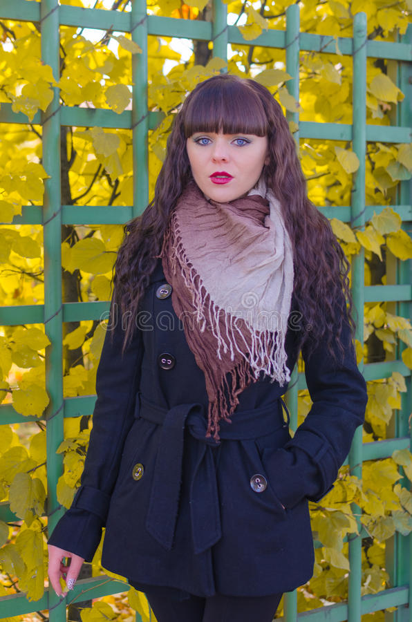Mooi meisje met blauwe ogen in de herfstpark stock fotografie