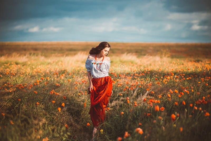 Mooi meisje in Oekraïener stock afbeeldingen