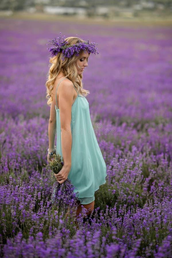 Mooi meisje op het lavendelgebied stock afbeelding