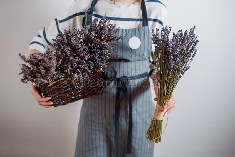Mooi meisje op het lavendelgebied De jonge vrouw verzamelt in een mand De zomer stock foto