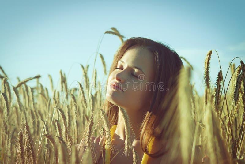 Mooi meisje op het tarwegebied stock foto