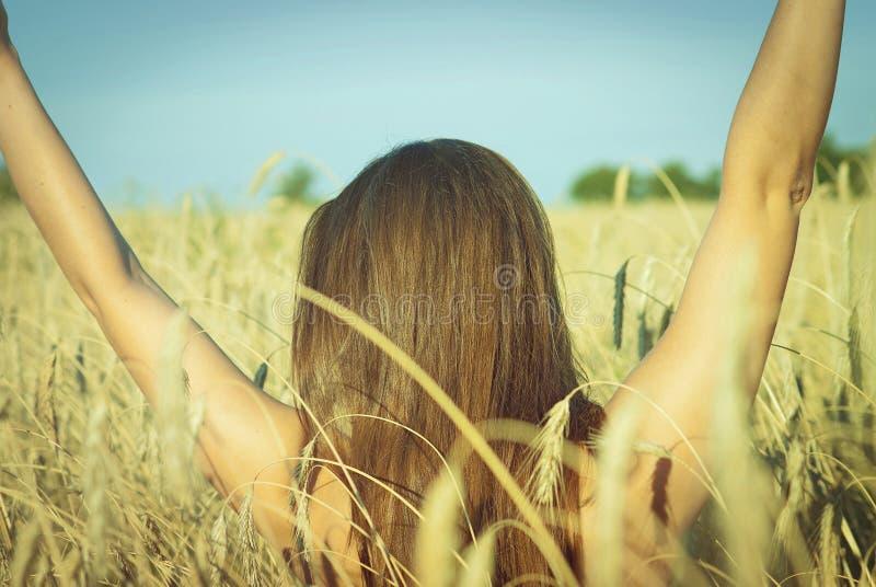 Mooi meisje op het tarwegebied royalty-vrije stock fotografie