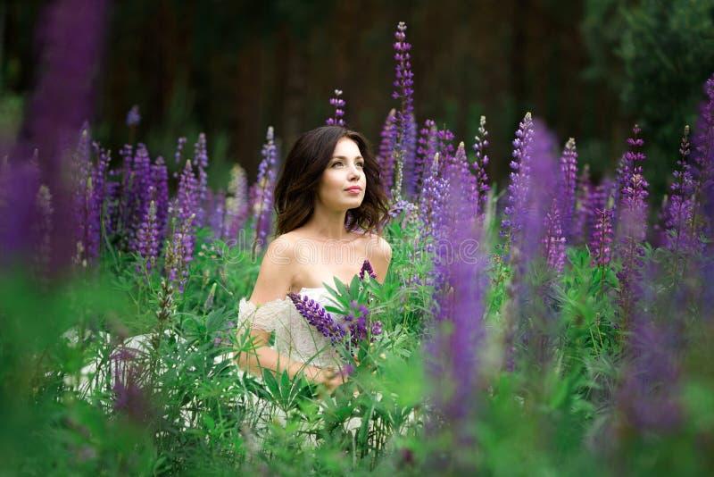 Mooi meisje in witte kleding op lupinegebied stock afbeelding