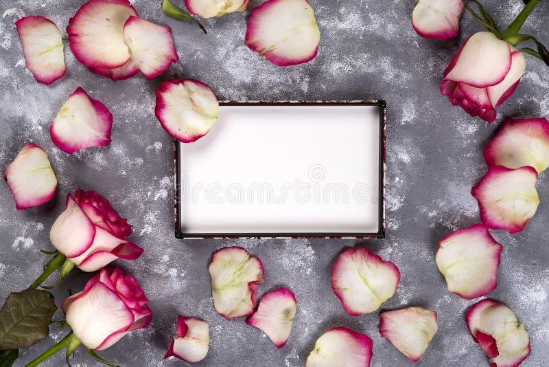 Mooi nam bloemen op grijze steenlijst toe Doorboor bloemengrens royalty-vrije stock foto