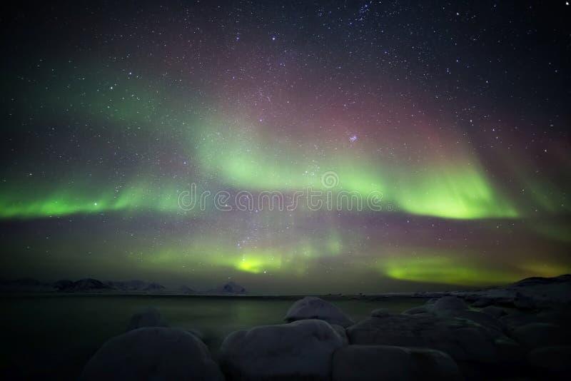 Mooi Noordpoolfjordlandschap met Noordelijke Lichten - Spitsbergen, Svalbard stock fotografie