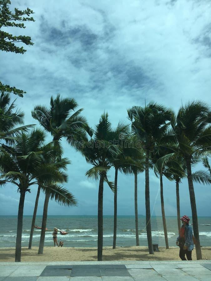 Mooi overzees en strand stock foto