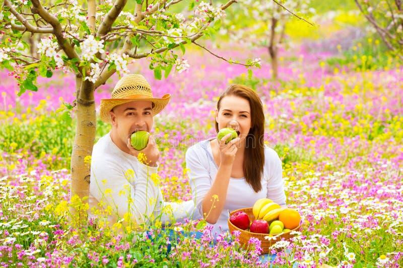 Mooi paar die picknick hebben stock afbeeldingen