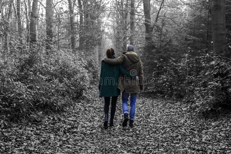 Mooi paar in het bos stock foto's