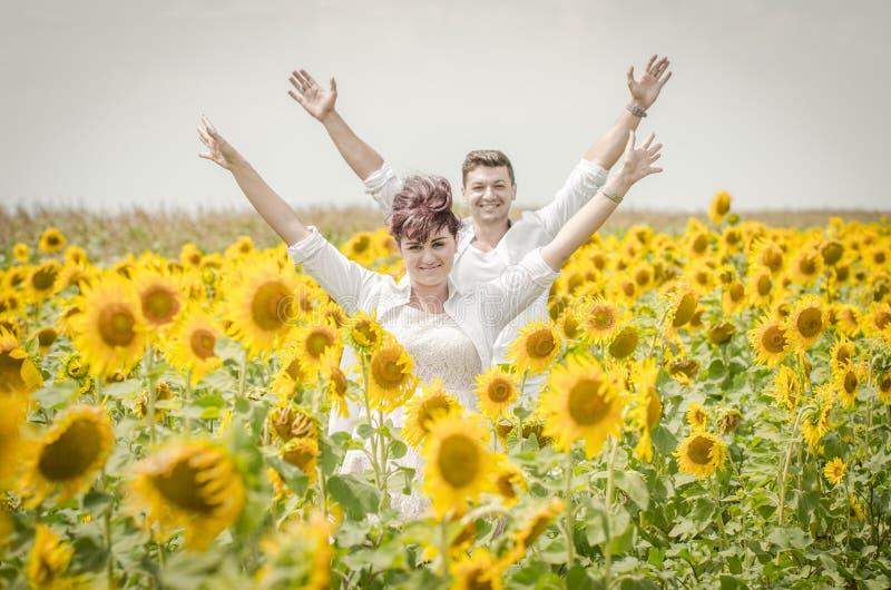 Mooi paar op een zonnebloemgebied stock afbeelding
