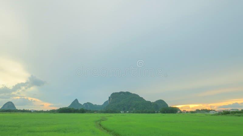 Mooi padieveld met berg en gloed royalty-vrije stock fotografie