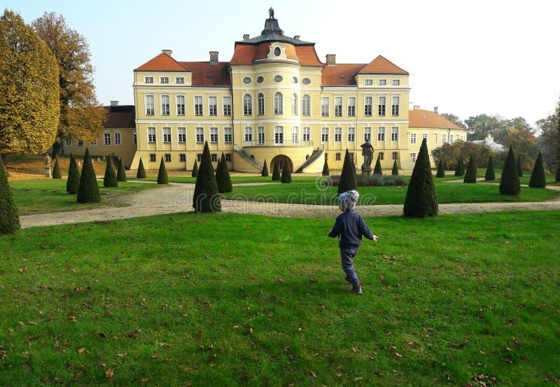 Mooi paleis in Rogalin, Polen stock foto's