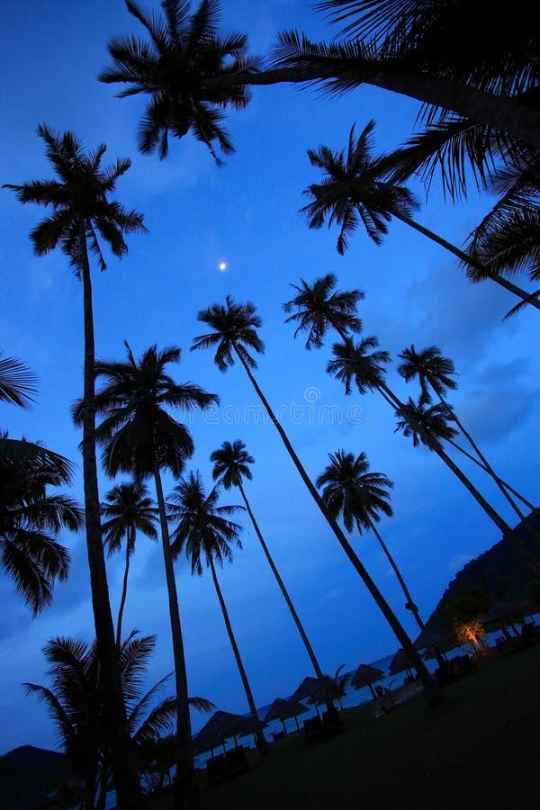 Mooi Panorama bij een Tropisch Strand royalty-vrije stock foto's