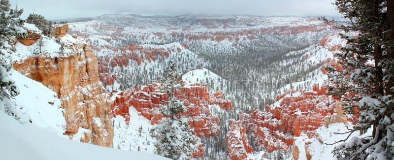Mooi panorama van Bryce-canion Nationalpark met sneeuw in de Winter met rode rotsen/Utah/de V.S. stock fotografie