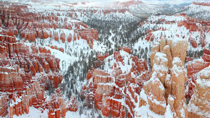 Mooi panorama van Bryce-canion Nationalpark met sneeuw in de Winter met rode rotsen/Utah/de V.S. royalty-vrije stock fotografie
