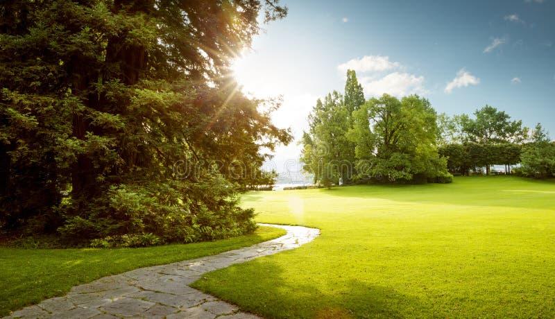 Mooi panorama van groen stadspark bij dageraad royalty-vrije stock afbeelding