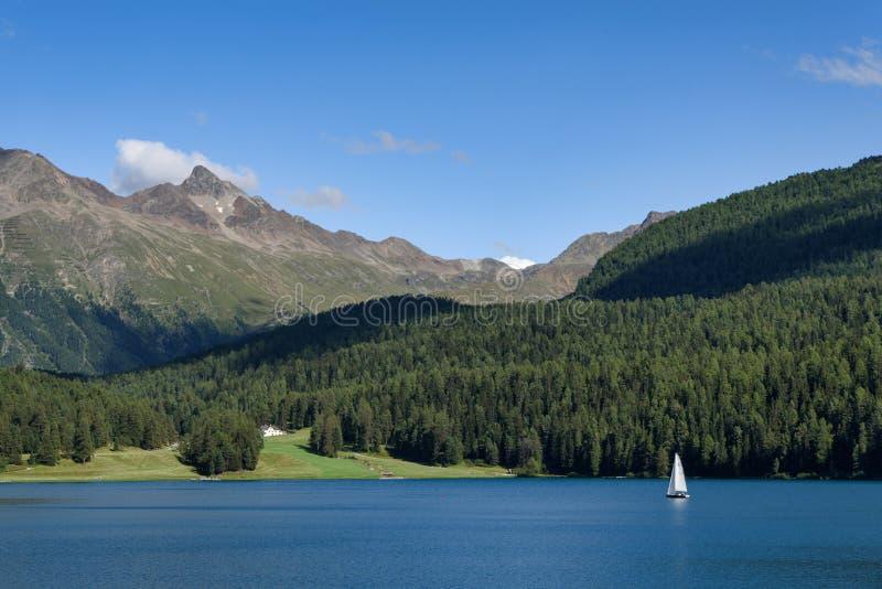 Mooi panorama van StMoritz-meer in Zwitserland stock afbeelding