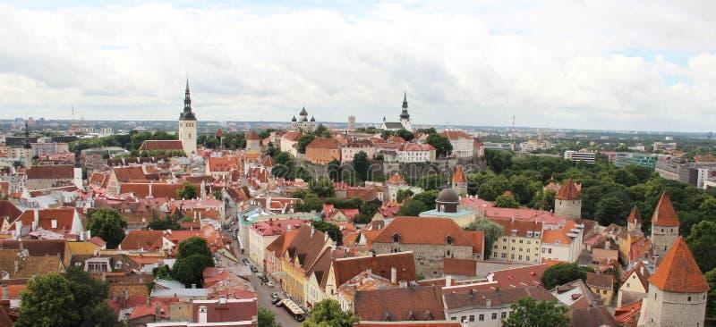 Mooi panorama van Tallin, Estland royalty-vrije stock afbeelding