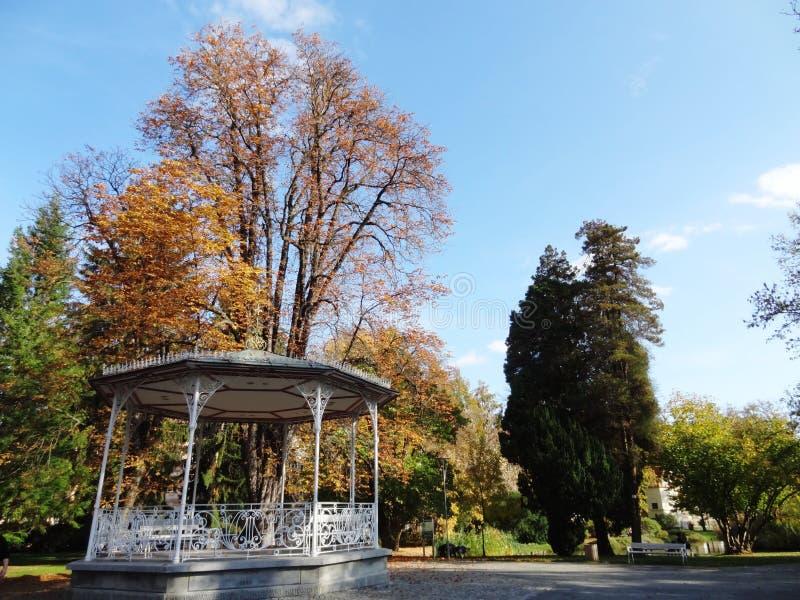Download Mooi park stock foto. Afbeelding bestaande uit enjoy - 39110658