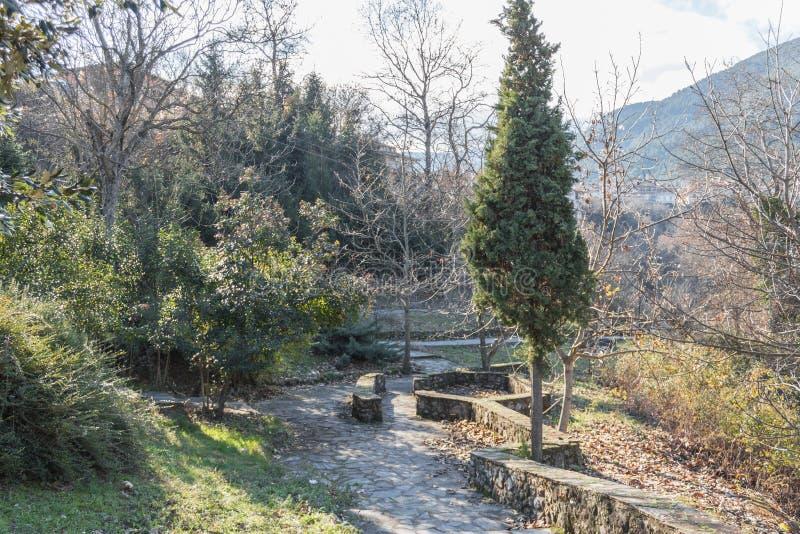 Mooi park in de de winter zonnige dag stock foto