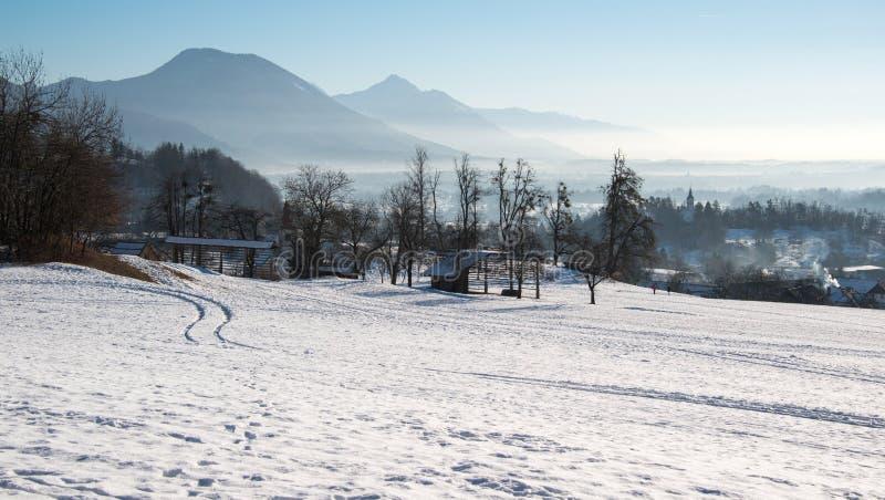 Mooi platteland op een de winterochtend stock afbeelding