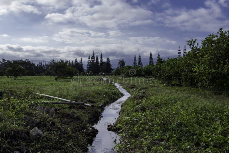 Mooi plattelandslandschap stock afbeeldingen