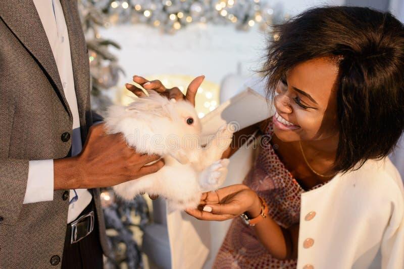 Mooi portret van de prachtige gelukkige Afrikaanse dame die met mooie glimlach het kleine witte pluizige konijn strijken onbekend stock foto's