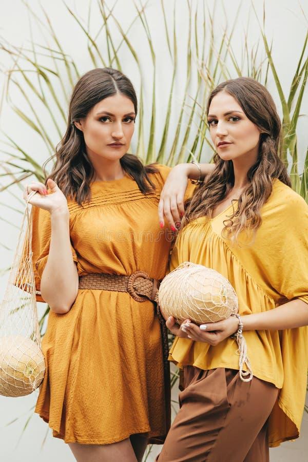 Mooi portret van twee gelukkige zusters i die heldere kleren met meloenen dragen royalty-vrije stock afbeeldingen