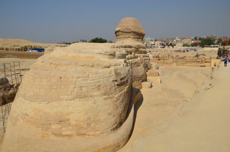 Mooi profiel van de Grote Sfinx royalty-vrije stock foto's