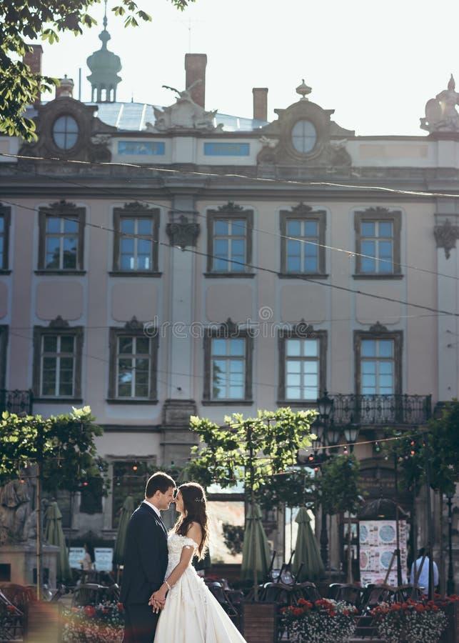 Mooi romantisch portret van de gelukkige jonggehuwden die handen houden en teder wat betreft neuzen bij de achtergrond van stock afbeeldingen