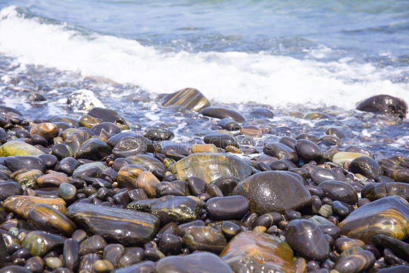 Mooi rond-rotspatroon op strand stock foto