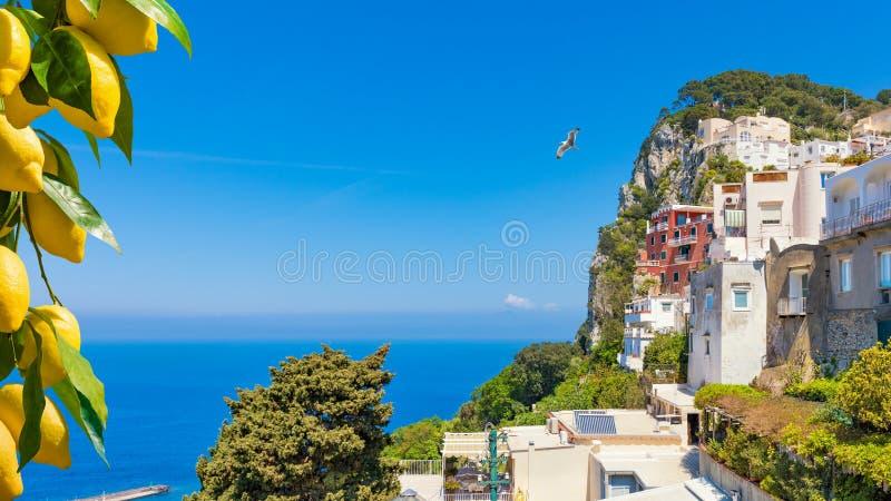 Mooi rotsachtig Capri-Eiland in Italië royalty-vrije stock foto's