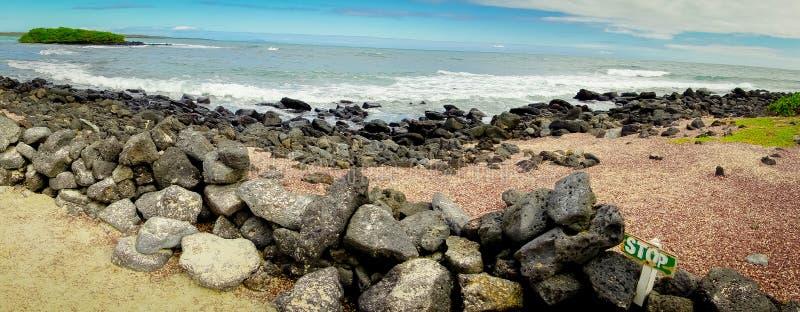 Mooi rotsachtig strand op Santa Cruz Island in de Eilanden van de Galapagos in Ecuador royalty-vrije stock afbeeldingen