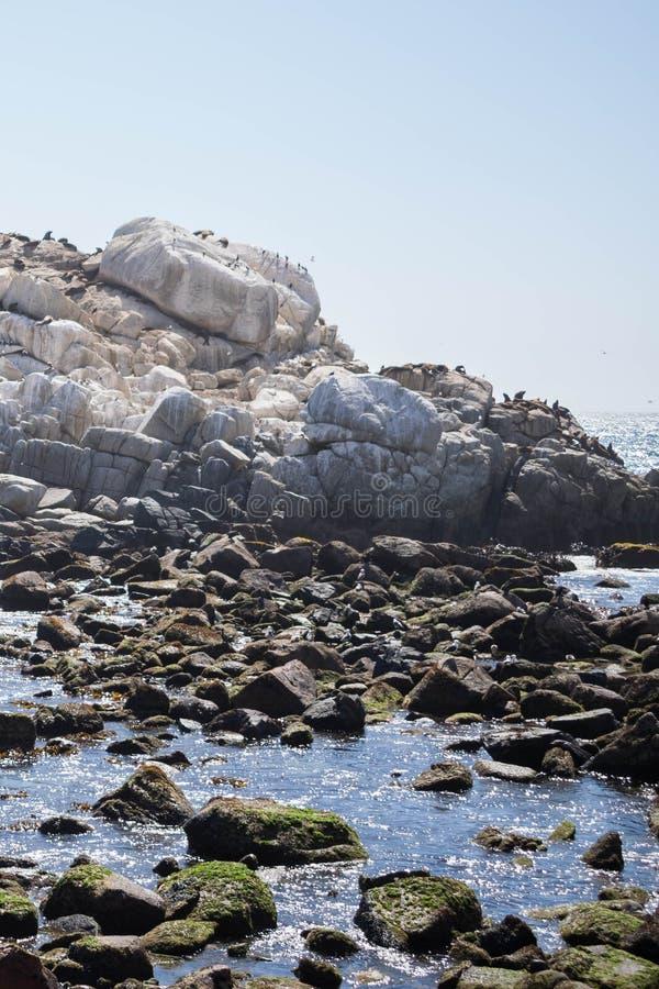 Mooi schot van een klein meer met rotsen en duidelijke hemel op de achtergrond stock afbeeldingen