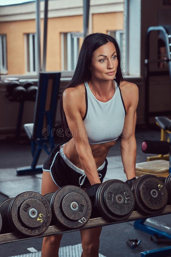 Mooi sexy atletisch donkerbruin wijfje in een sportkleding die zich dichtbij de teller met domoren in de gymnastiek bevinden stock afbeeldingen