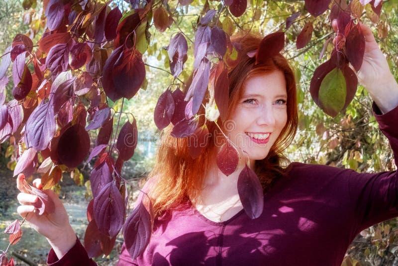 Mooi sexy mooi jong foxy vurig roodharig meisje, onder violette lilac de herfststruik, die de bladeren in beide handen houden stock fotografie