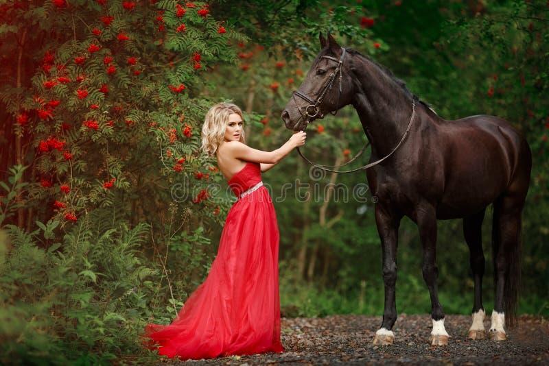 Mooi slank blondemeisje die in rode kleding een zwart paard koesteren stock afbeelding